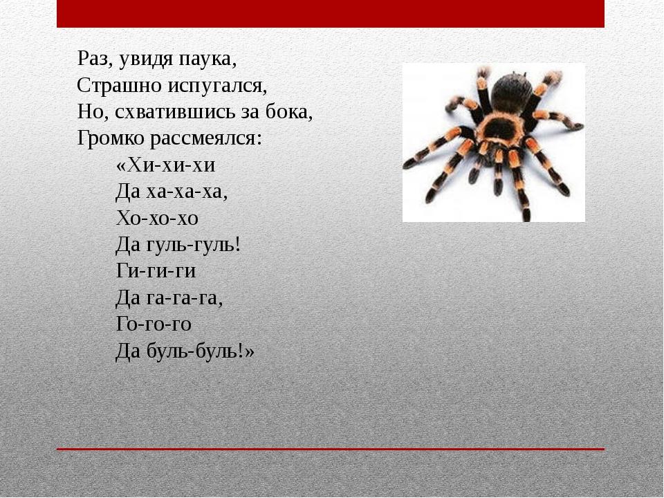 Раз, увидя паука, Страшно испугался, Но, схватившись за бока, Громко рассм...