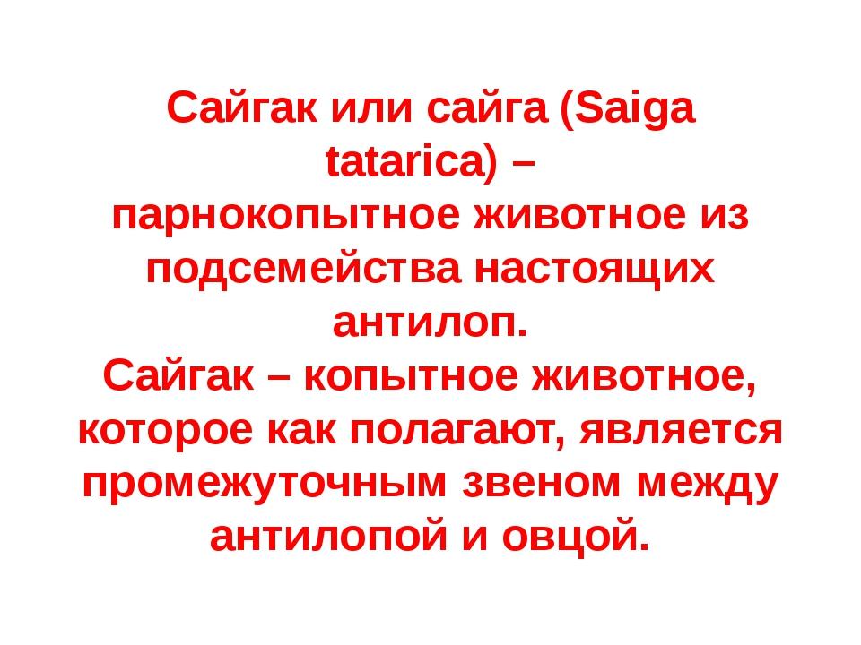 Сайгакилисайга (Saiga tatarica)– парнокопытноеживотноеиз подсемейства на...