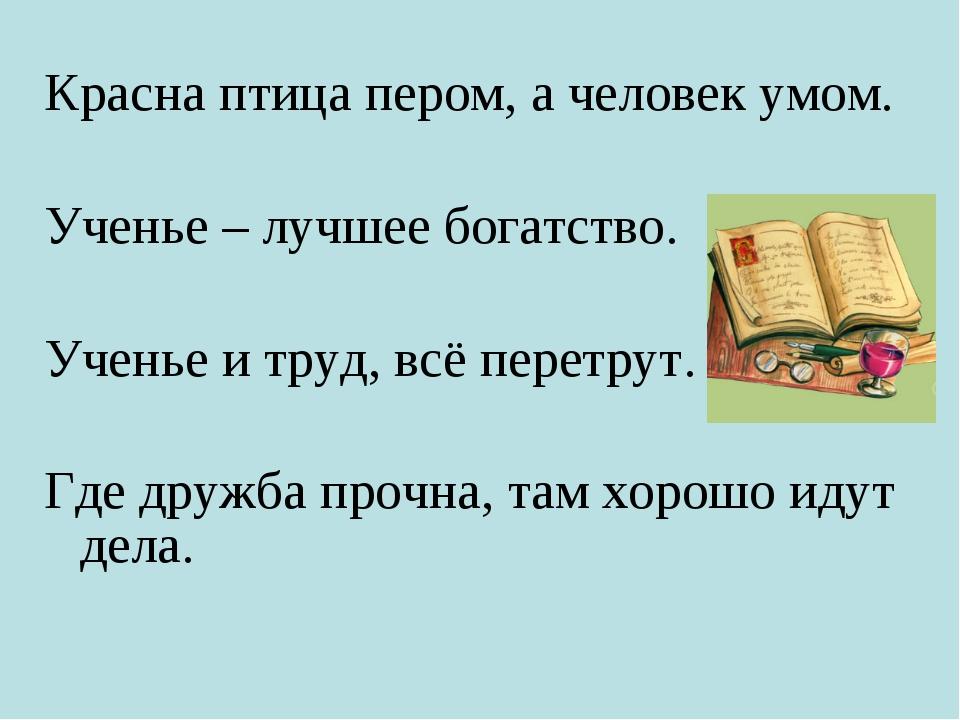 Красна птица пером, а человек умом. Ученье – лучшее богатство. Ученье и труд,...