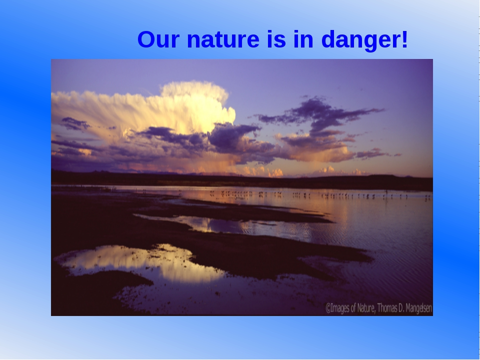 Our nature is in danger!