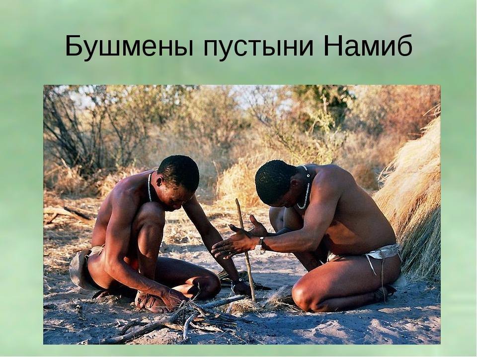 Бушмены пустыни Намиб