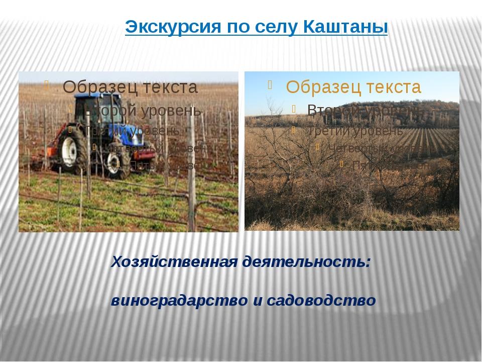 Хозяйственная деятельность: виноградарство и садоводство Экскурсия по селу Ка...