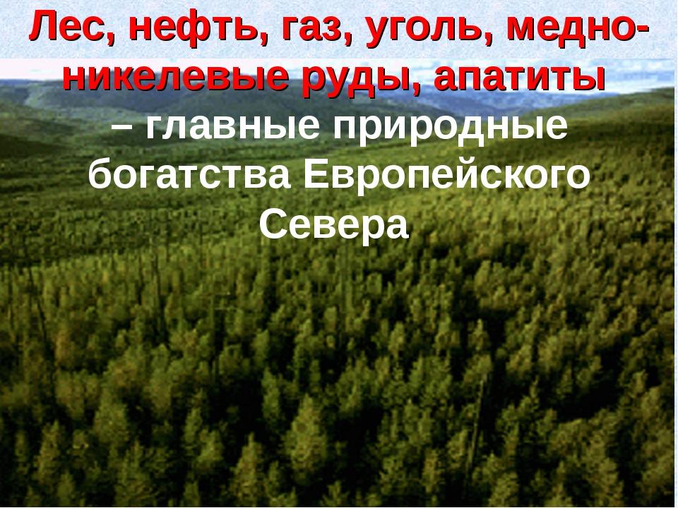 Лес, нефть, газ, уголь, медно-никелевые руды, апатиты – главные природные бог...