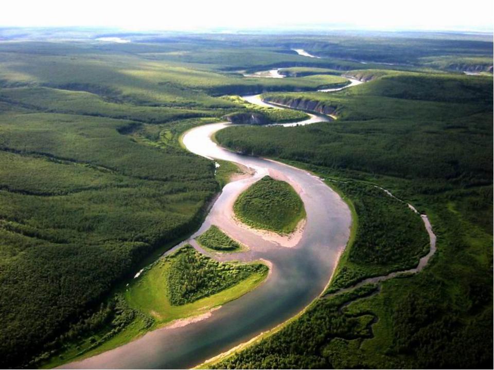 Девственные леса Коми – всемирное природное наследие