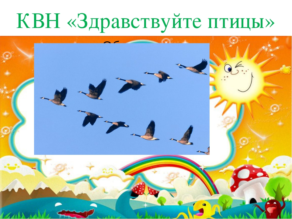 КВН «Здравствуйте птицы»