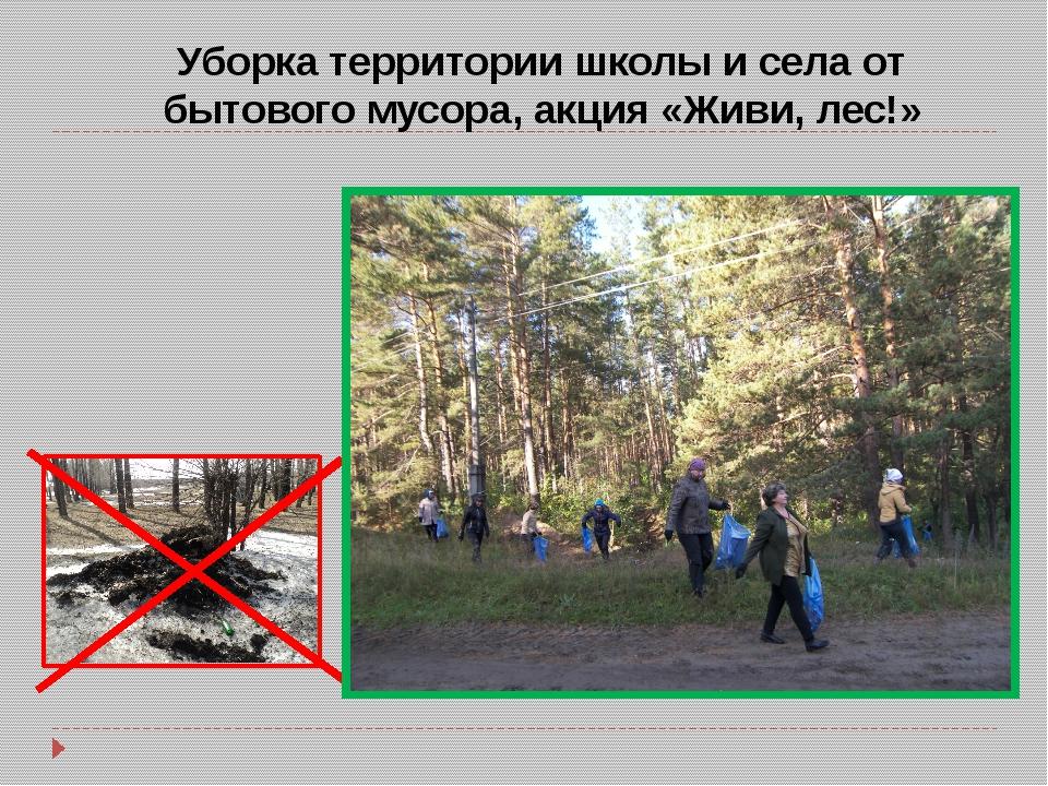 Уборка территории школы и села от бытового мусора, акция «Живи, лес!»