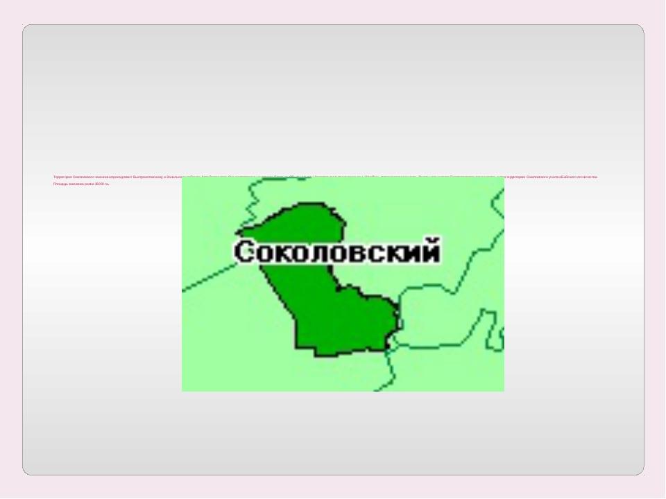 Территория Соколовского заказника принадлежит Быстроистокскому и Зональному...