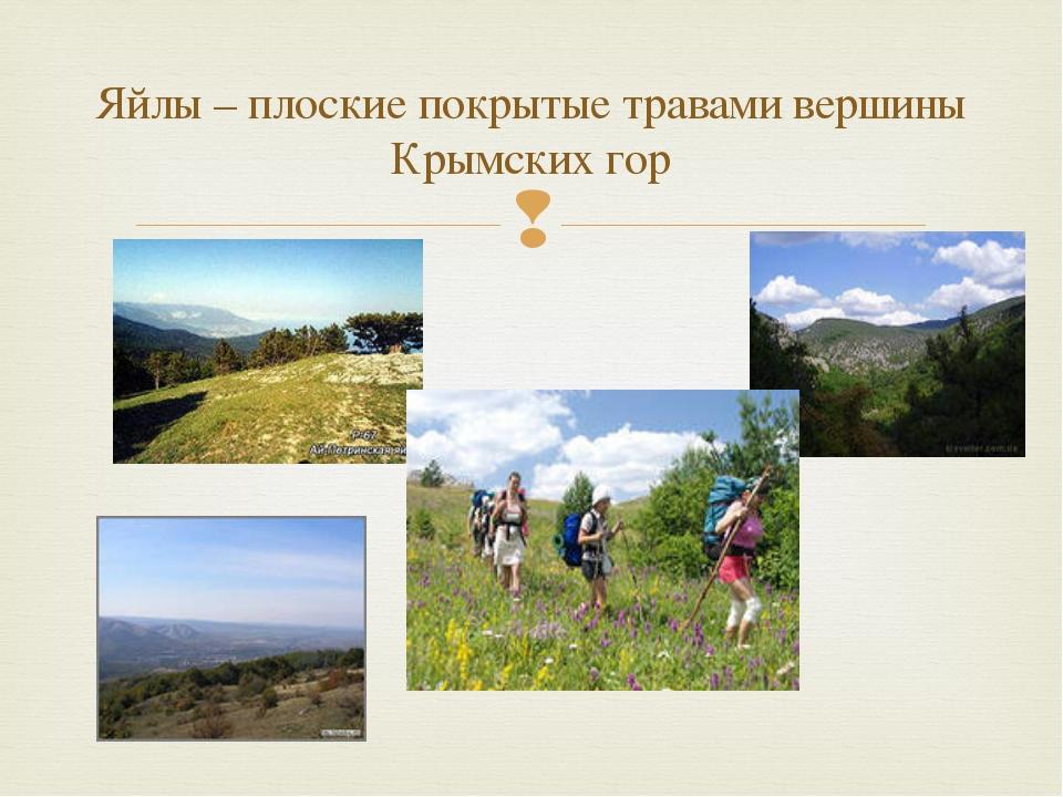 Яйлы – плоские покрытые травами вершины Крымских гор 