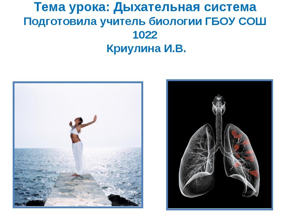 Тема урока: Дыхательная система Подготовила учитель биологии ГБОУ СОШ 1022 Кр...