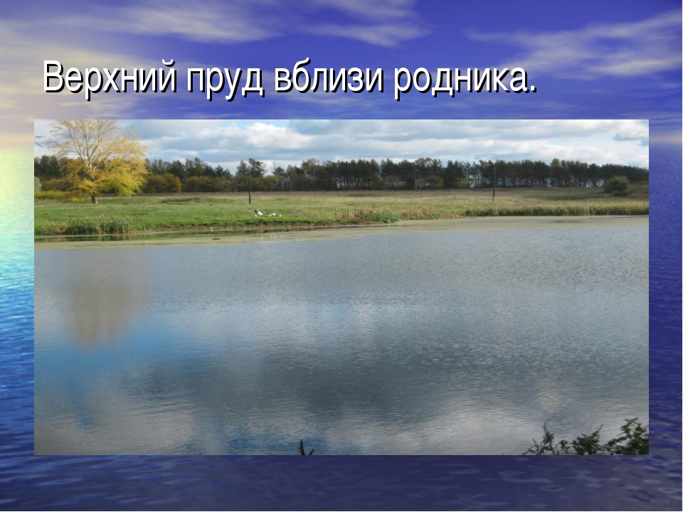 Верхний пруд вблизи родника.