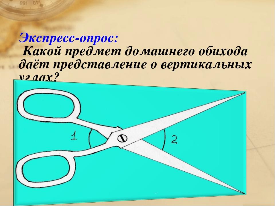 Экспресс-опрос: Какой предмет домашнего обихода даёт представление о вертикал...
