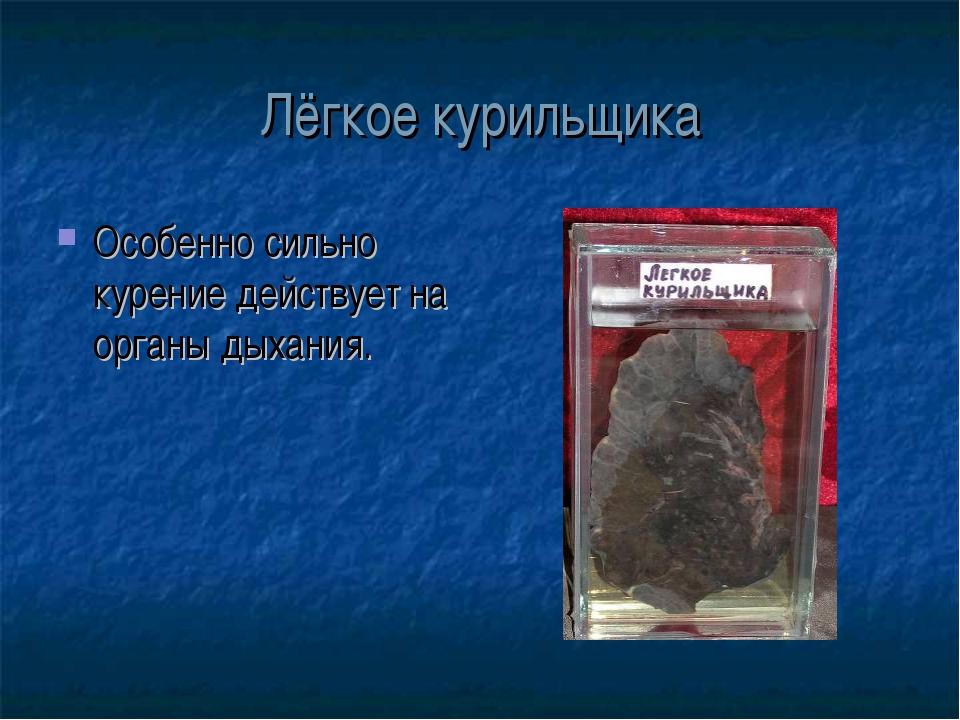 Лёгкое курильщика Особенно сильно курение действует на органы дыхания.