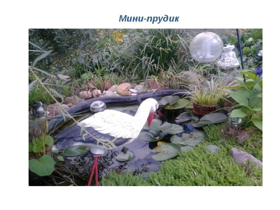 Мини-прудик