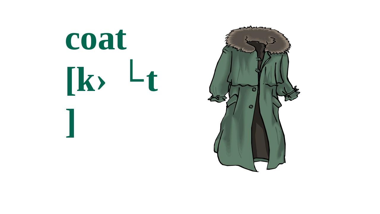 coat  [kəʊt]