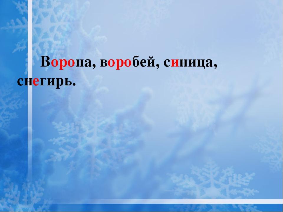 Ворона, воробей, синица, снегирь.