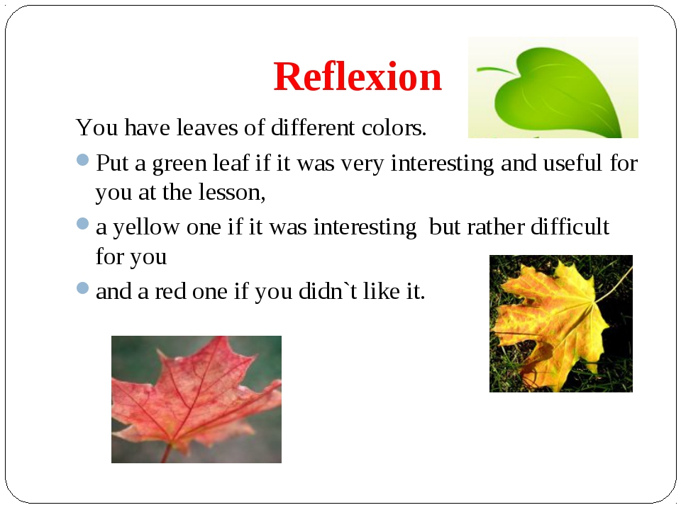 Reflexion You have leaves of different colors. Put a green leaf if it was ver...
