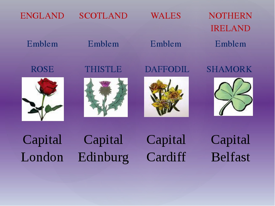 ENGLAND SCOTLAND WALES NOTHERN IRELAND Emblem ROSE Emblem  THISTLE Emblem ...