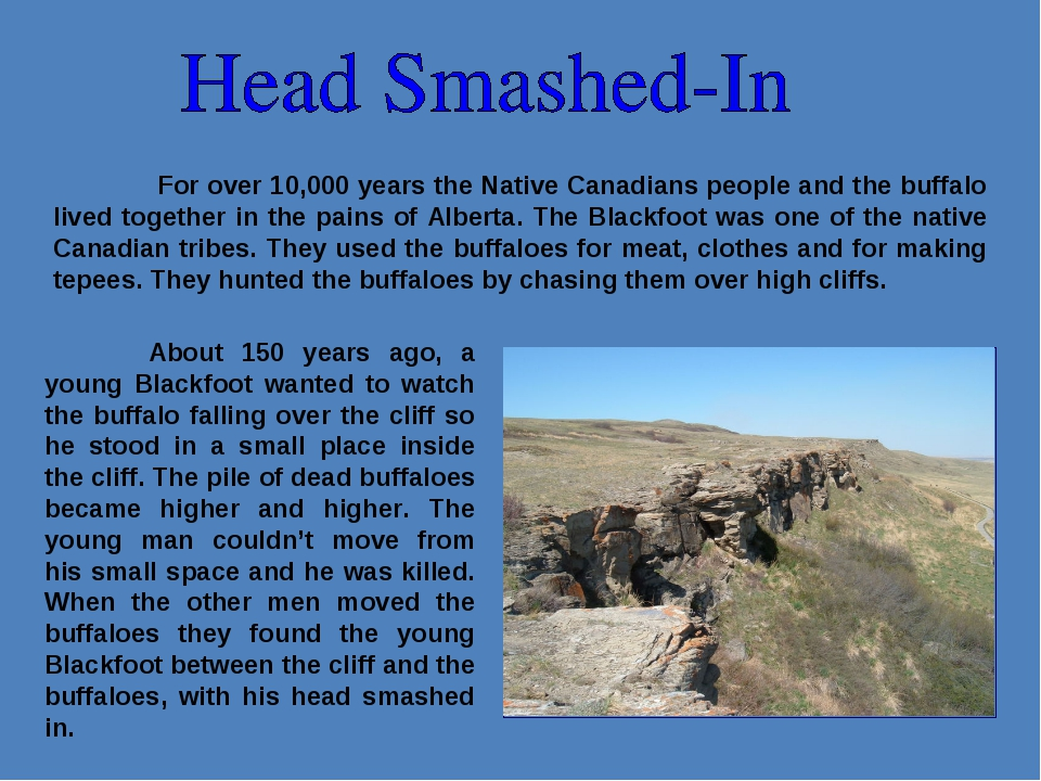 For over 10,000 years the Native Canadians people and the buffalo lived toge...