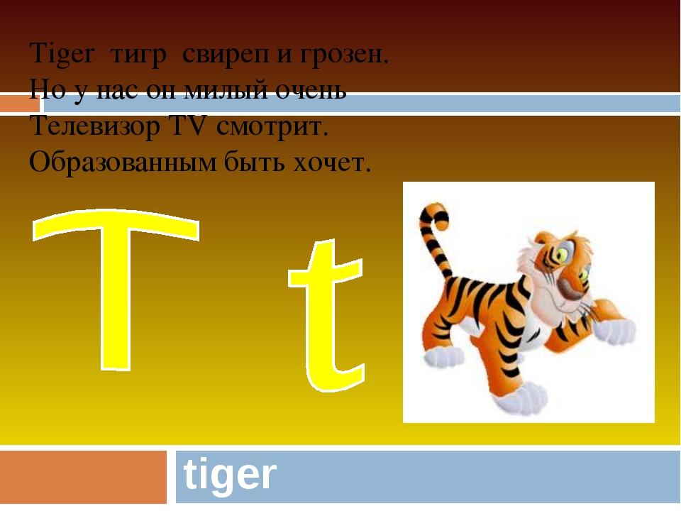 tiger Tiger тигр свиреп и грозен. Но у нас он милый очень Телевизор TV смотри...