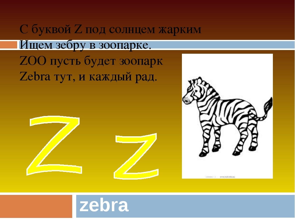 zebra С буквой Z под солнцем жарким Ищем зебру в зоопарке. ZOO пусть будет зо...