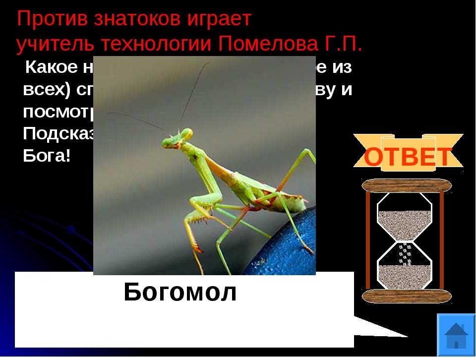 Против знатоков играет учитель технологии Помелова Г.П. Какое насекомое (един...