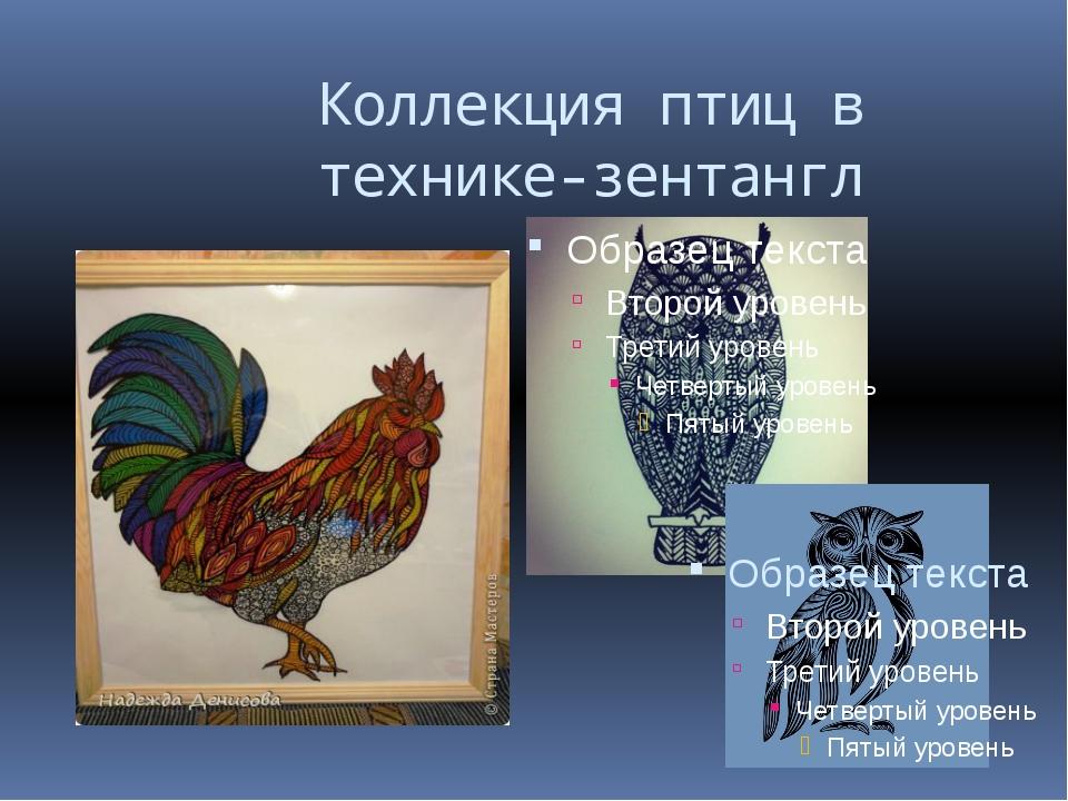 Коллекция птиц в технике-зентангл