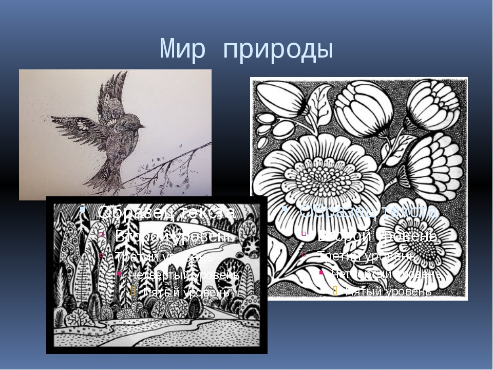 Мир природы