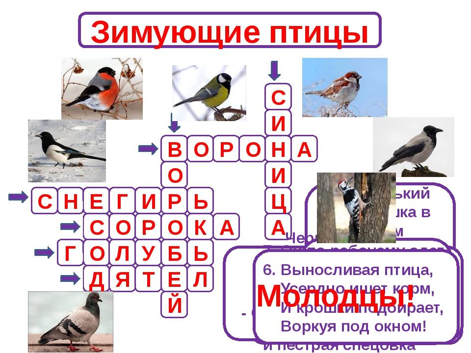 Зимующие птицы В О И Й Е Б О Р С Н С 1.Маленький мальчишка в сером армячишке...