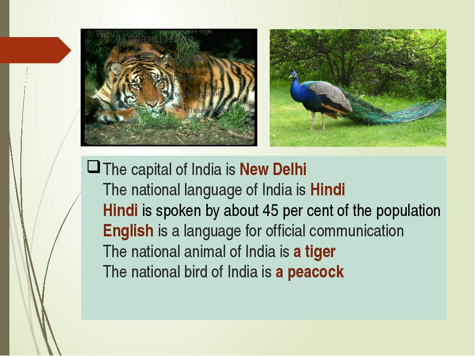 The capital of India is New Delhi The national language of India is Hindi Hin...
