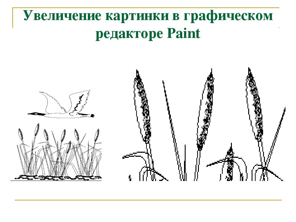 Увеличение картинки в графическом редакторе Paint
