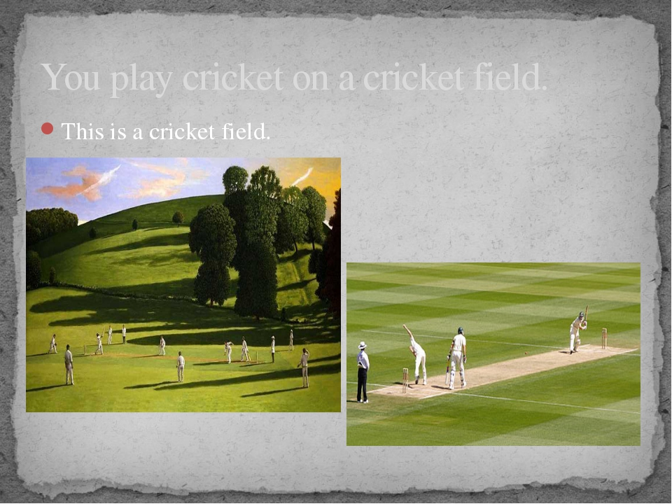 You play cricket on a cricket field. This is a cricket field. On the field th...
