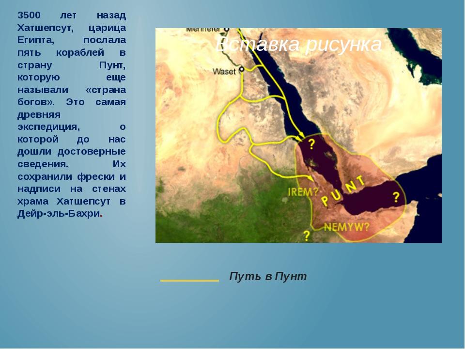 3500 лет назад Хатшепсут, царица Египта, послала пять кораблей в страну Пунт,...