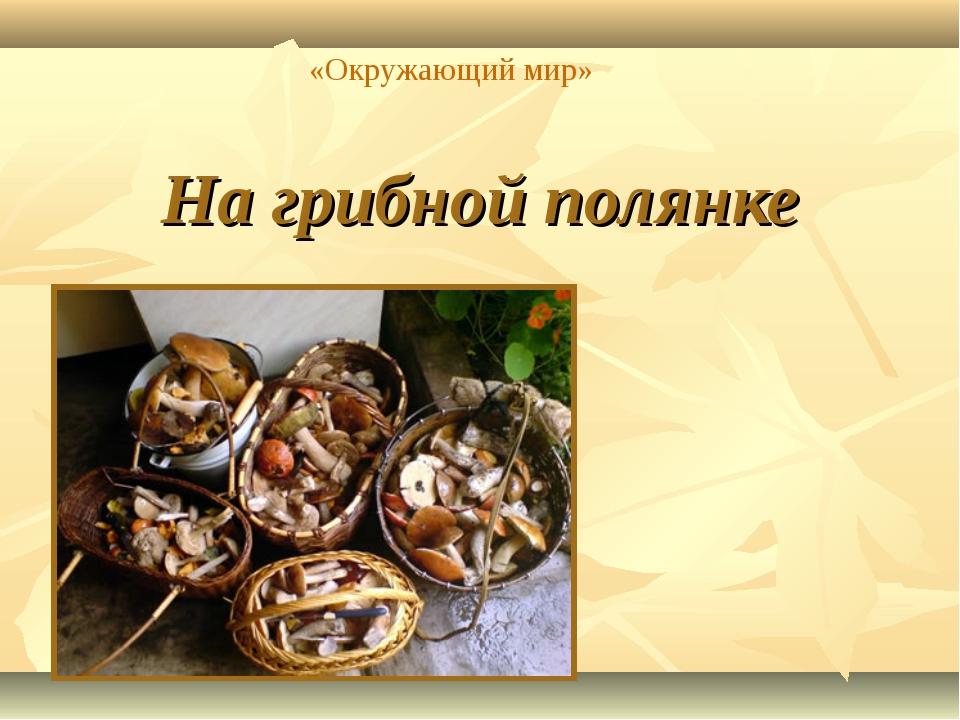 На грибной полянке «Окружающий мир»
