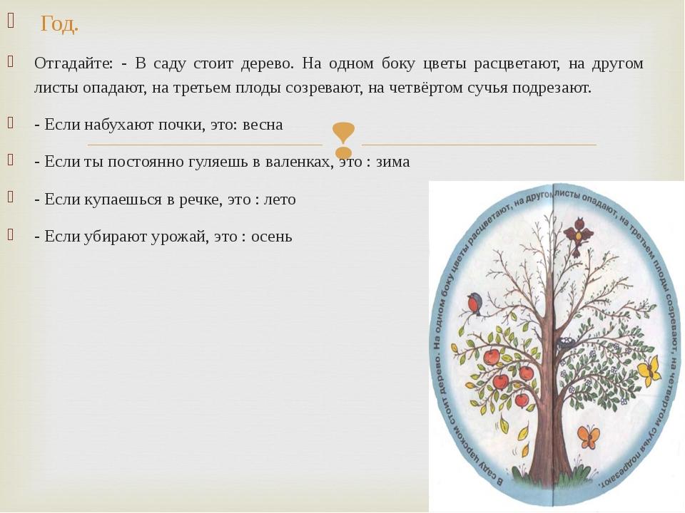 Год. Отгадайте: - В саду стоит дерево. На одном боку цветы расцветают, на др...