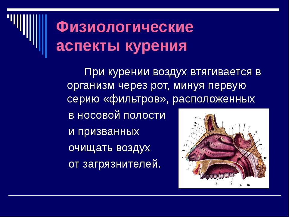 Физиологические аспекты курения При курении воздух втягивается в организм чер...