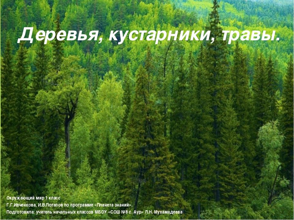 Деревья, кустарники, травы. Окружающий мир 1 класс Г.Г.Ивченкова, И.В.Потапов...