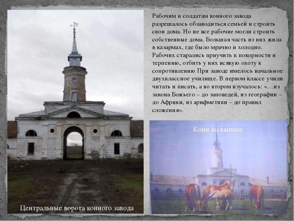 Рабочим и солдатам конного завода разрешалось обзаводиться семьей и строить с...