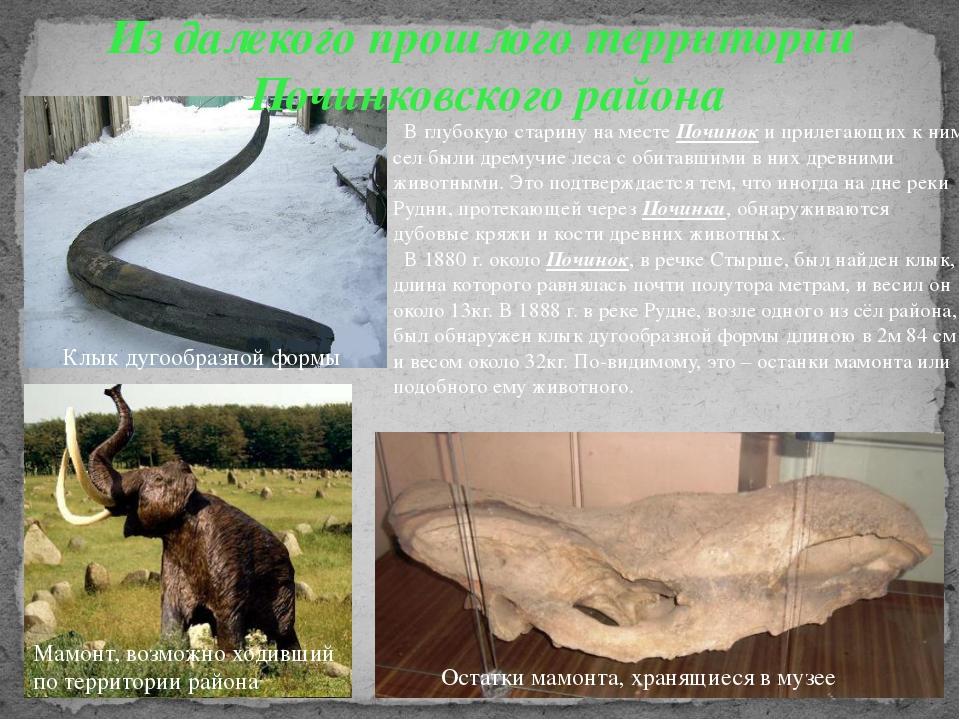 Из далекого прошлого территории Починковского района В глубокую старину на ме...