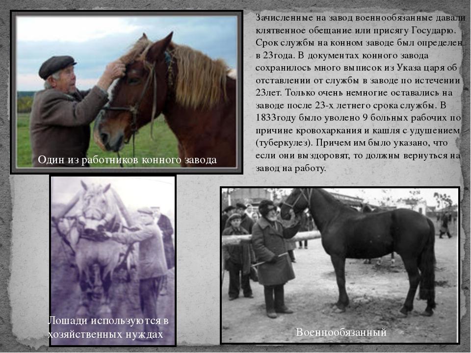Зачисленные на завод военнообязанные давали клятвенное обещание или присягу Г...
