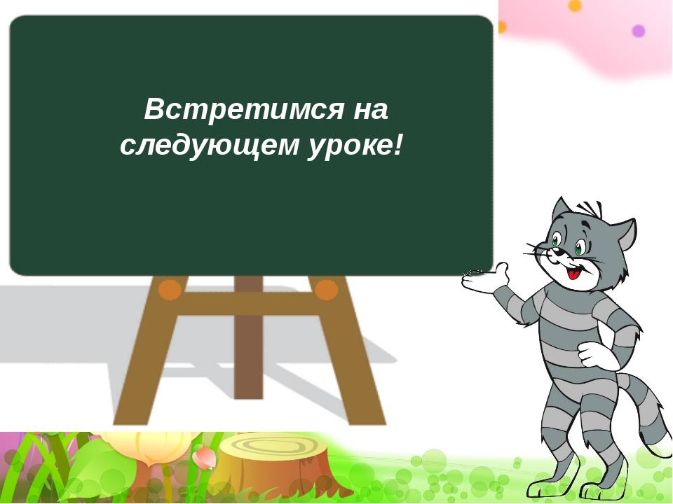 Встретимся на следующем уроке!