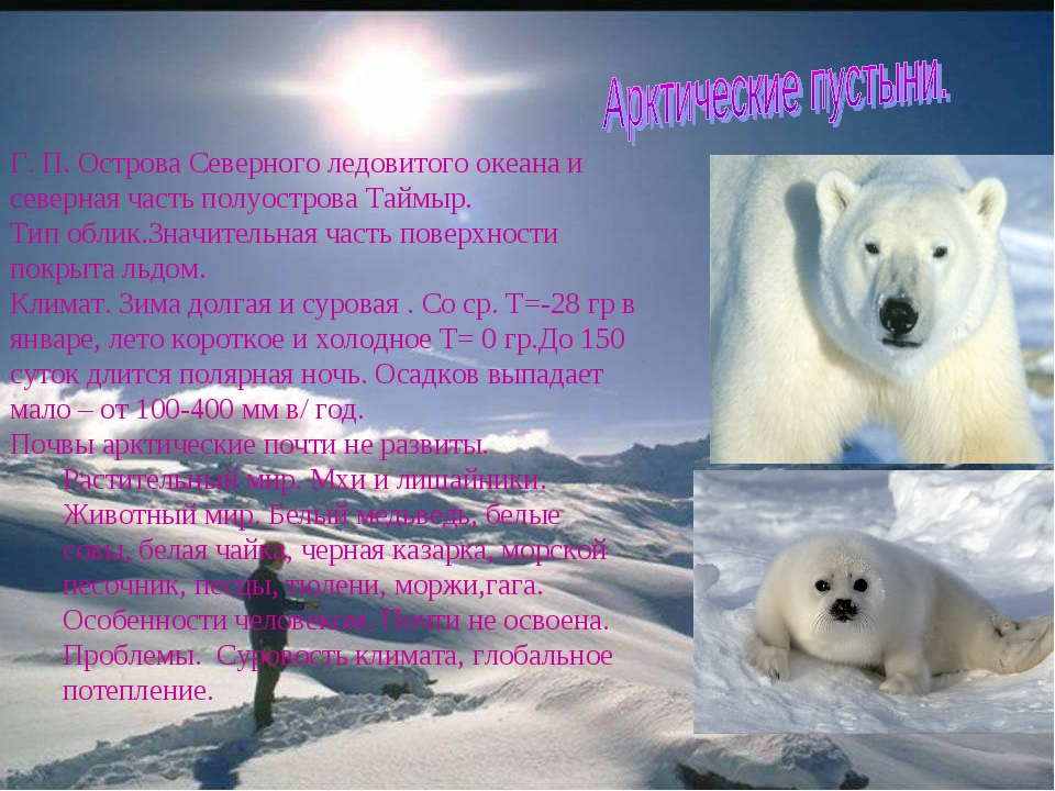 Г. П. Острова Северного ледовитого океана и северная часть полуострова Таймы...