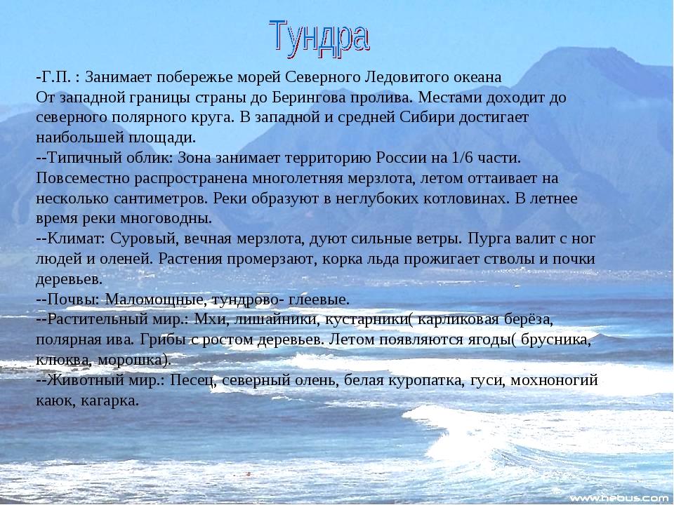 -Г.П. : Занимает побережье морей Северного Ледовитого океана От западной гран...