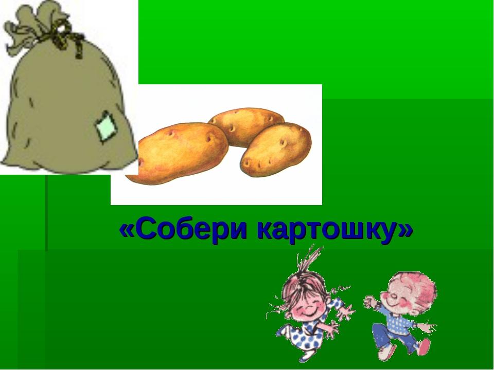 «Собери картошку»
