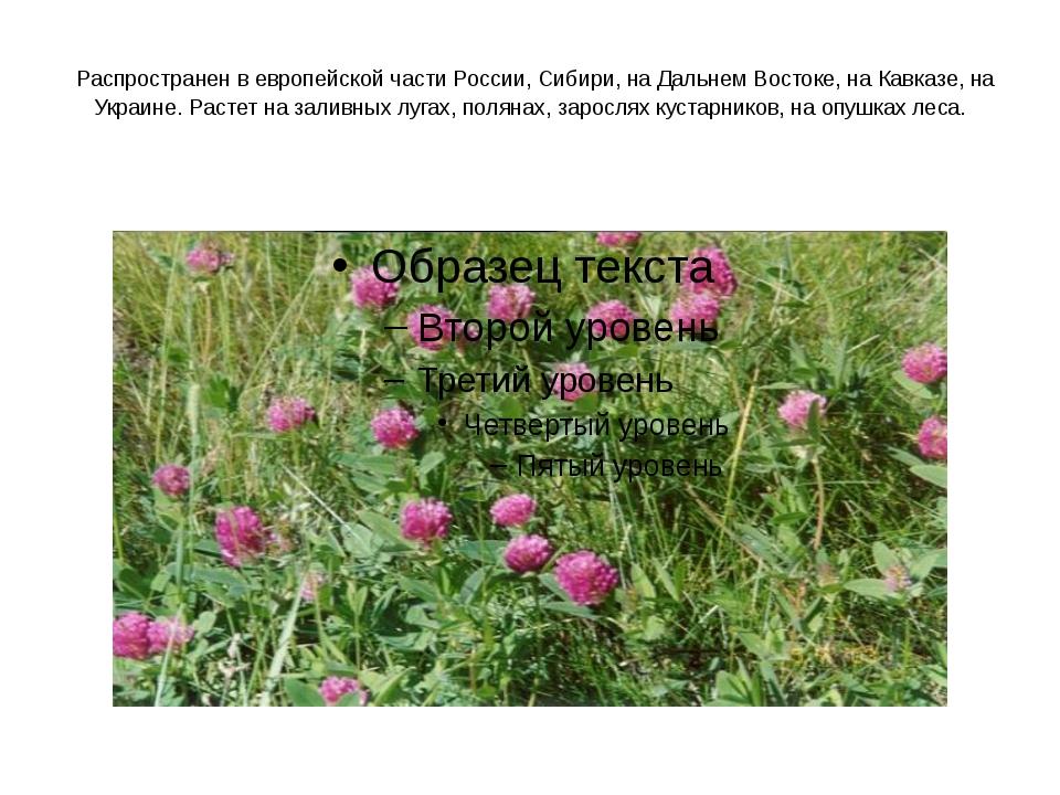 Распространен в европейской части России, Сибири, на Дальнем Востоке, на Кав...