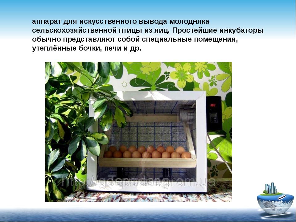 Инкуба́тор (от латинского incubo, — высиживаю птенцов) — аппарат для искусств...