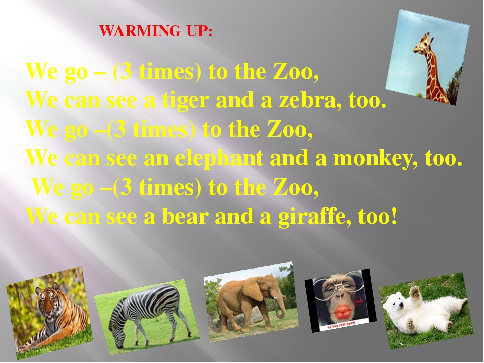 WARMING UP: We go – (3 times) to the Zoo, We can see a tiger and a zebra, too...