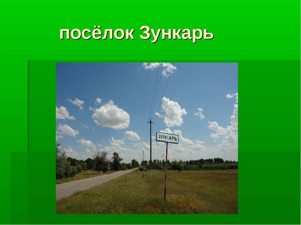 посёлок Зункарь