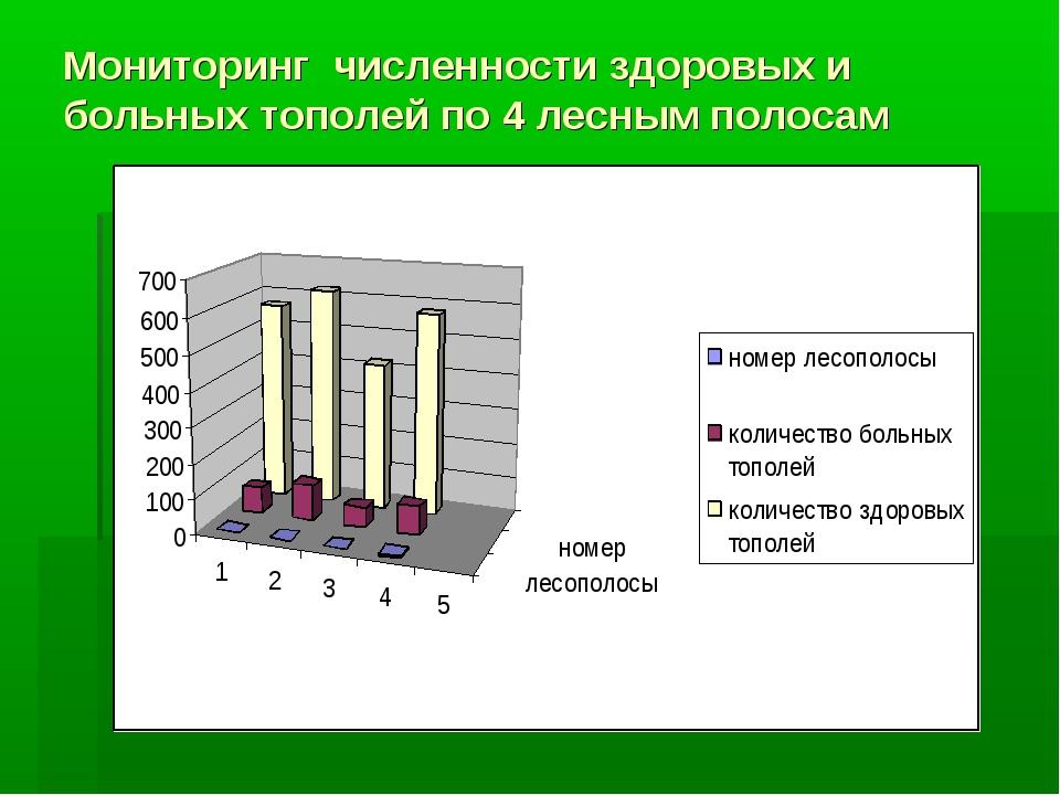 Мониторинг численности здоровых и больных тополей по 4 лесным полосам