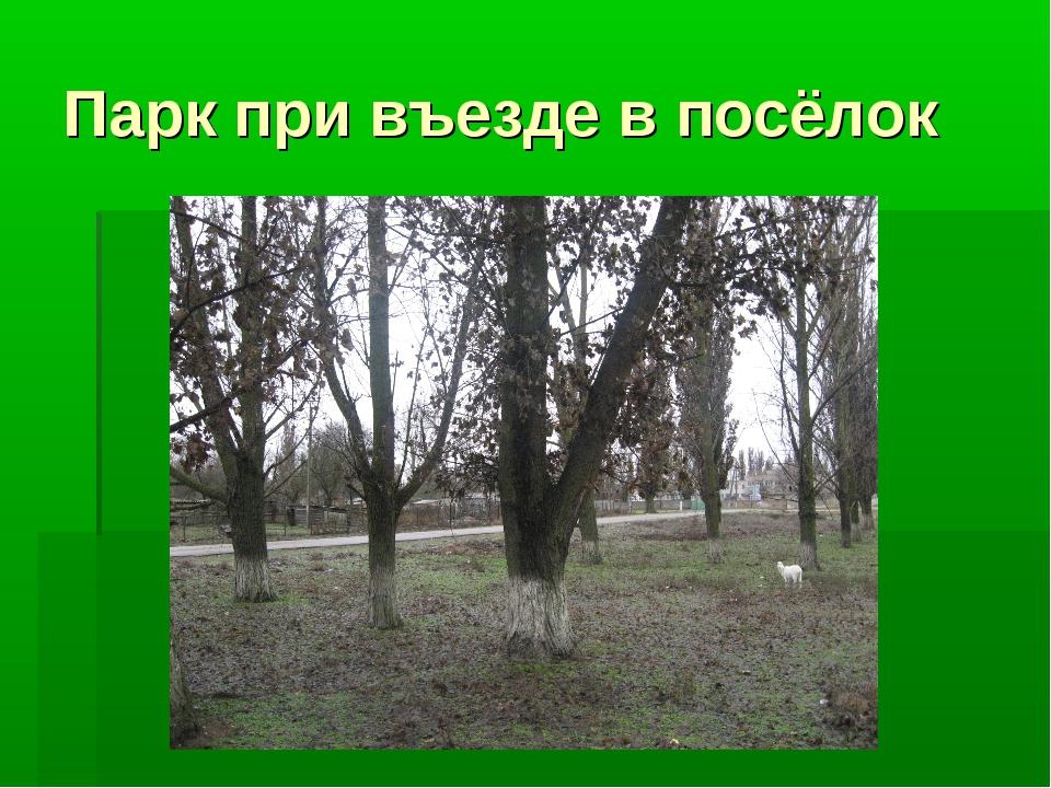 Парк при въезде в посёлок