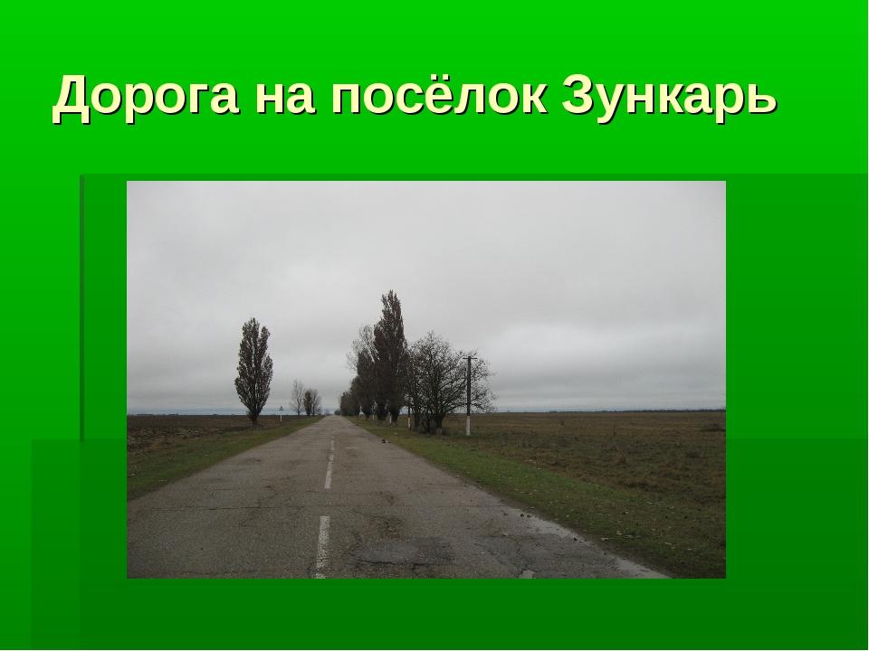 Дорога на посёлок Зункарь